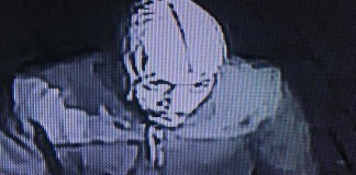 Burglar Suspect