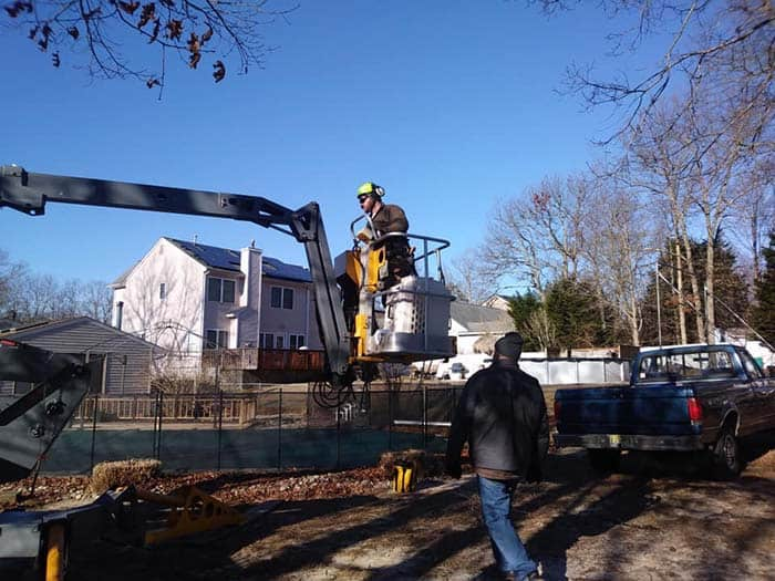 Manahawkin Tree Service rescued the cat. (Photo courtesy Stafford Township)