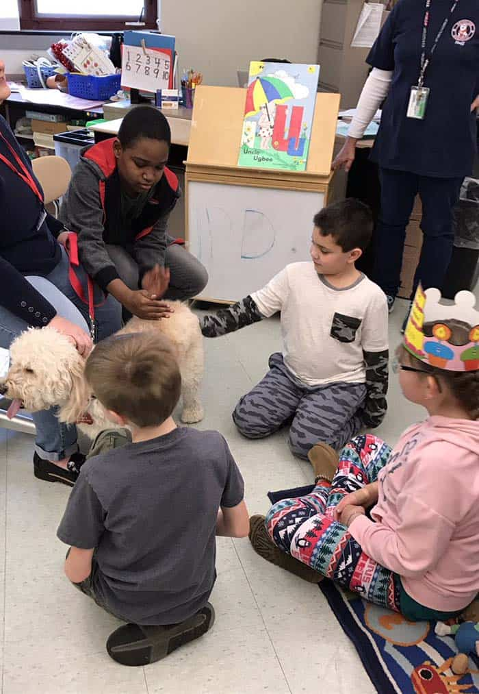 Former principal Alysson Keelen brought her mini golden doodle, Yogi Edward Keelan, back to where his journey to becoming a therapy dog began: Memorial School. (Photo courtesy Ray Gredder, Memorial School)