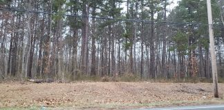 This wooded area at the corner of Hawkin Road and Route 537 may be home to Trophy Park, a $120 million sports complex. The township Planning Board will hear further testimony on the plan during its Feb. 4 meeting. (Photo by Bob Vosseller)