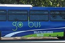 NJTransit bus. (Photo courtesy NJTransit.com)