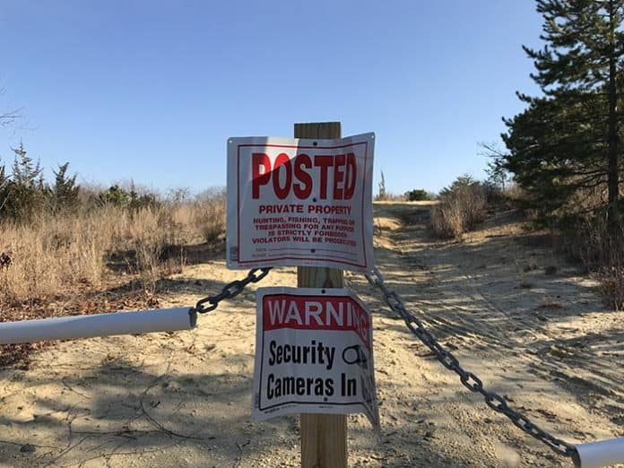 Currently the land where a housing development will go is overgrown. (Photo special to the Toms River Times)