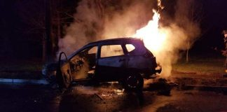 The car erupted into flames after hitting the pole. (Photo courtesy Pleasant Plains Vol. Fire Department)