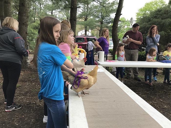 Chickens from the 4-H group Wise Quackers were on display. (Photo by Chris Lundy)