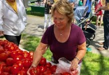 Hannah Infantolino of Brick checks out the tomatoes. (Photo by Judy Smested-Nunn)