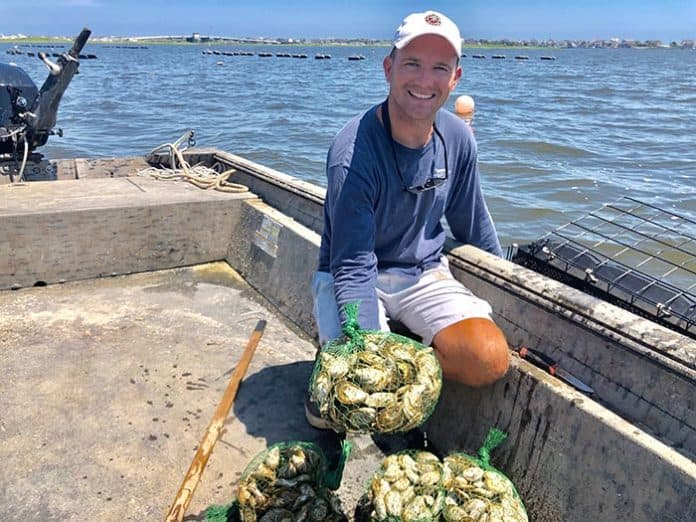 These fully grown oysters, being held by oyster farmer Tommy Burke, are ready to sell.(Photo by Judy Smestad-Nunn)