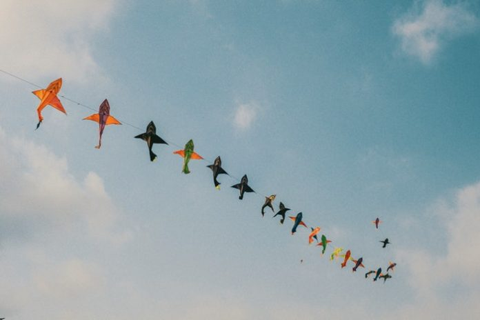 Kites. (File photos)