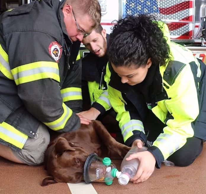 The Ramtown-Howell Fire Company recently received specially designed oxygen masks for pets to help animals who might be at risk for smoke inhalation during a home fire. (Photo courtesy Debra Bennetts)